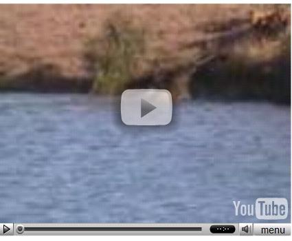 Лучшие ролики 2007 на YouTube
